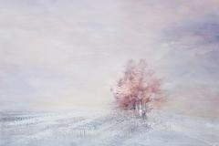 Tenui colori sotto la prima neve